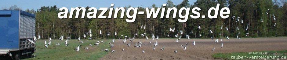 amazing-wings.de - Tauben, ihre Züchter, und der Sport